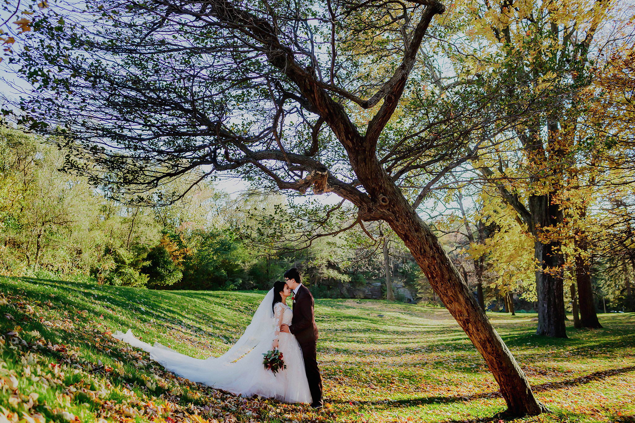 Wedding portrait by unusual tree in Montreal park